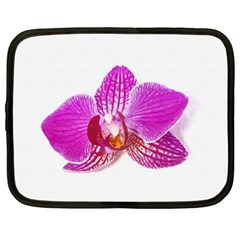Lilac Phalaenopsis Flower, Floral Oil Painting Art Netbook Case (xl)