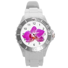 Lilac Phalaenopsis Flower, Floral Oil Painting Art Round Plastic Sport Watch (l)