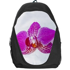 Lilac Phalaenopsis Flower, Floral Oil Painting Art Backpack Bag
