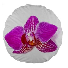 Lilac Phalaenopsis Flower, Floral Oil Painting Art Large 18  Premium Round Cushions