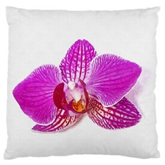 Lilac Phalaenopsis Flower, Floral Oil Painting Art Large Flano Cushion Case (one Side)