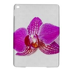 Lilac Phalaenopsis Flower, Floral Oil Painting Art Ipad Air 2 Hardshell Cases
