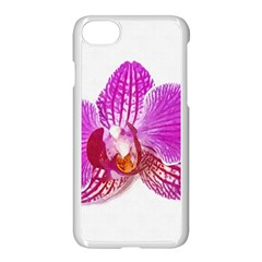 Lilac Phalaenopsis Flower, Floral Oil Painting Art Apple Iphone 7 Seamless Case (white)