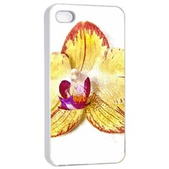 Yellow Phalaenopsis Flower, Floral Aquarel Watercolor Painting Art Apple Iphone 4/4s Seamless Case (white)