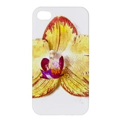 Yellow Phalaenopsis Flower, Floral Aquarel Watercolor Painting Art Apple Iphone 4/4s Hardshell Case