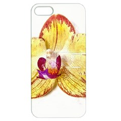 Yellow Phalaenopsis Flower, Floral Aquarel Watercolor Painting Art Apple Iphone 5 Hardshell Case With Stand