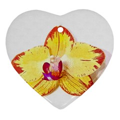 Phalaenopsis Yellow Flower, Floral Oil Painting Art Ornament (heart)