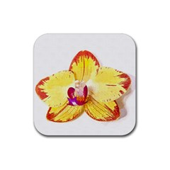 Phalaenopsis Yellow Flower, Floral Oil Painting Art Rubber Square Coaster (4 Pack)