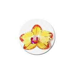 Phalaenopsis Yellow Flower, Floral Oil Painting Art Golf Ball Marker (4 Pack)