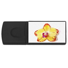 Phalaenopsis Yellow Flower, Floral Oil Painting Art Rectangular Usb Flash Drive