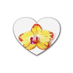 Phalaenopsis Yellow Flower, Floral Oil Painting Art Heart Coaster (4 Pack)