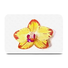 Phalaenopsis Yellow Flower, Floral Oil Painting Art Plate Mats