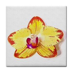 Phalaenopsis Yellow Flower, Floral Oil Painting Art Face Towel