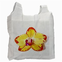 Phalaenopsis Yellow Flower, Floral Oil Painting Art Recycle Bag (two Side)