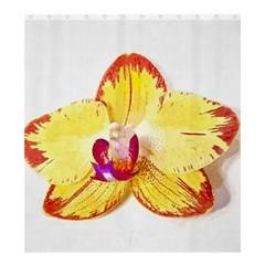 Phalaenopsis Yellow Flower, Floral Oil Painting Art Shower Curtain 66  X 72  (large)