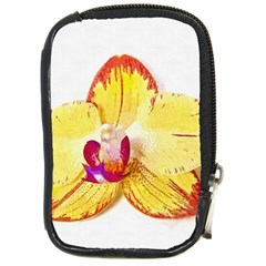 Phalaenopsis Yellow Flower, Floral Oil Painting Art Compact Camera Cases
