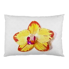 Phalaenopsis Yellow Flower, Floral Oil Painting Art Pillow Case (two Sides)