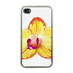 Phalaenopsis Yellow Flower, Floral Oil Painting Art Apple Iphone 4 Case (clear)