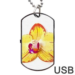 Phalaenopsis Yellow Flower, Floral Oil Painting Art Dog Tag Usb Flash (two Sides)