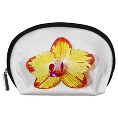 Phalaenopsis Yellow Flower, Floral Oil Painting Art Accessory Pouches (large)