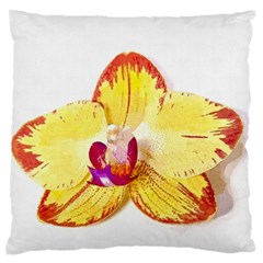 Phalaenopsis Yellow Flower, Floral Oil Painting Art Large Flano Cushion Case (two Sides)