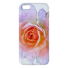 Pink Rose Flower, Floral Oil Painting Art Apple Iphone 5 Premium Hardshell Case