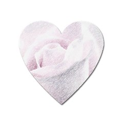 Rose Pink Flower  Floral Pencil Drawing Art Heart Magnet