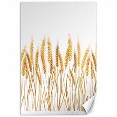 Wheat Plants Canvas 24  X 36