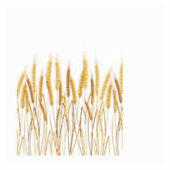 Wheat Plants Small Garden Flag (two Sides)