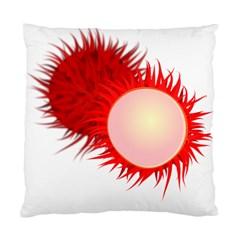 Rambutan Fruit Red Sweet Standard Cushion Case (one Side)