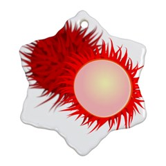 Rambutan Fruit Red Sweet Snowflake Ornament (two Sides)