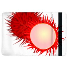 Rambutan Fruit Red Sweet Ipad Air 2 Flip