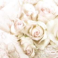 Pastel Roses Antique Vintage Magic Photo Cubes