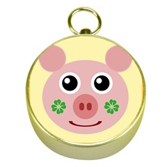 Luck Lucky Pig Pig Lucky Charm Gold Compasses