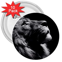 Male Lion Face 3  Buttons (10 Pack)