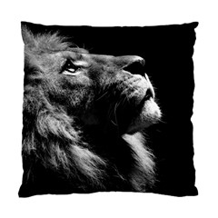 Male Lion Face Standard Cushion Case (two Sides)
