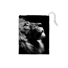 Male Lion Face Drawstring Pouches (small)