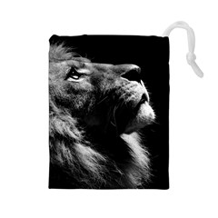 Male Lion Face Drawstring Pouches (large)