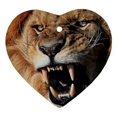 Male Lion Angry Ornament (heart)
