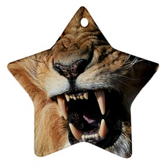 Male Lion Angry Ornament (star)