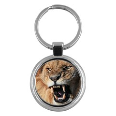 Male Lion Angry Key Chains (round)