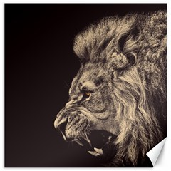 Angry Male Lion Canvas 20  X 20