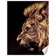 Angry Male Lion Gold Canvas 18  X 24