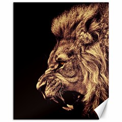 Angry Male Lion Gold Canvas 11  X 14