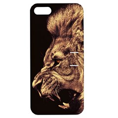 Angry Male Lion Gold Apple Iphone 5 Hardshell Case With Stand