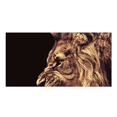Angry Male Lion Gold Satin Shawl