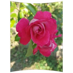 Romantic Red Rose Photography Back Support Cushion