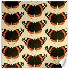 Butterfly Butterflies Insects Canvas 16  X 16