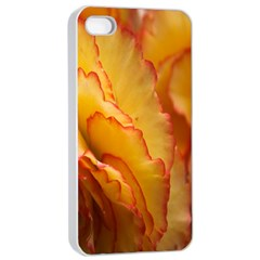 Flowers Leaves Leaf Floral Summer Apple Iphone 4/4s Seamless Case (white)
