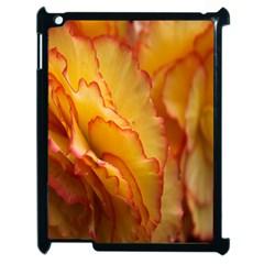 Flowers Leaves Leaf Floral Summer Apple Ipad 2 Case (black)